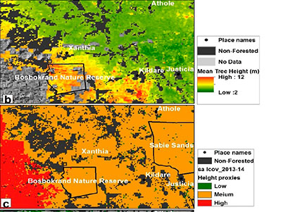 Indirect estimation of structural parameters in South African forests using Misr-Hr and lidar remote sensing data