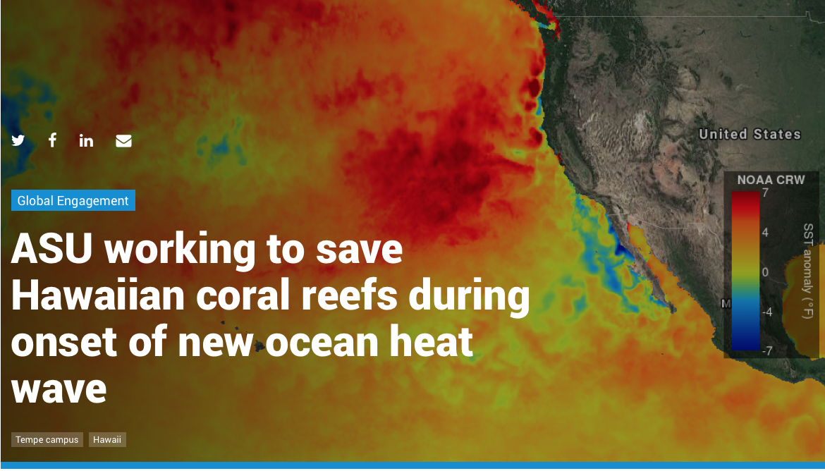 ASU working to save Hawaiian coral reefs during onset of new ocean heat wave