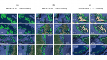Location, extent of coral reefs mapped worldwide using advanced AI