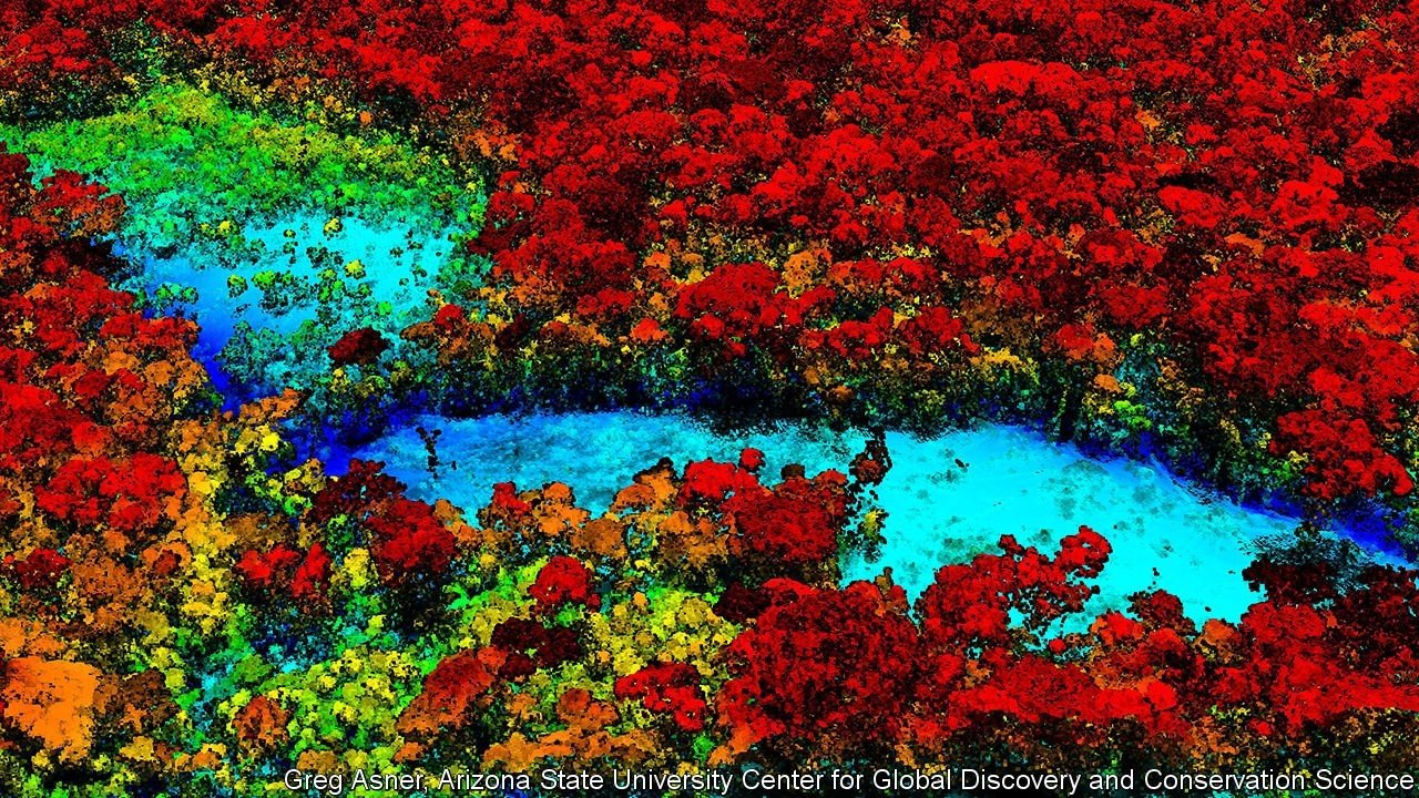 All kinds of new technology are being used to monitor the natural world